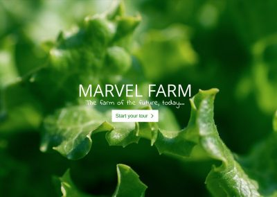 Super Farm Website / Landing Page