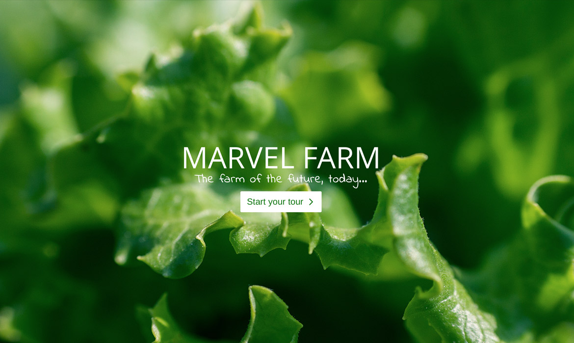 Superfarm Website / Landing Page